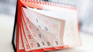 Vet Architecture Calendar